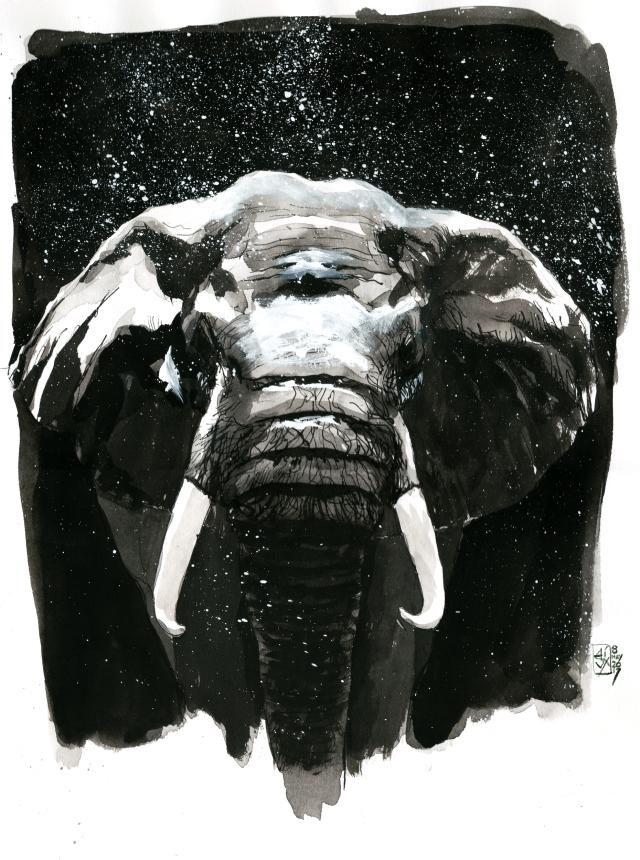 Elephant In Rain